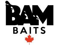 BAM WEB NEW